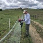 prairie dog fencing boulder pest control humane wildlife removal